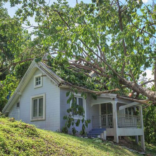 Roof Storm Damage Repairs